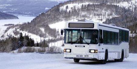 Bussturer under sportlovet